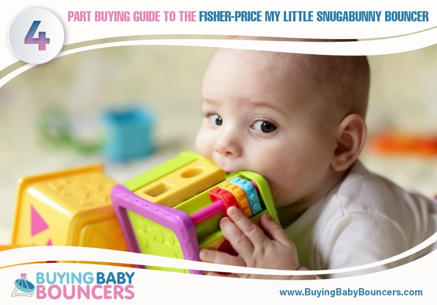 baby bouncer features
